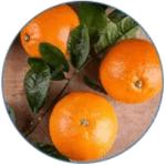 Extract de fructe de portocal amar