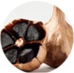 Černý česnek