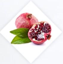 Výtažek z divokého granátového jablka
