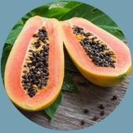 Výtažek z ovoce papája